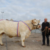Grands prix d honneur vaches europe pallot jean charles oudry